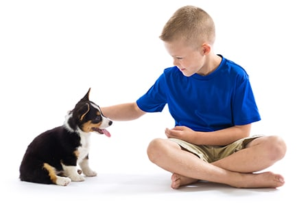 AAHA Accreditated Animal Hospital in Stone Mountain: Boy Petting Puppy